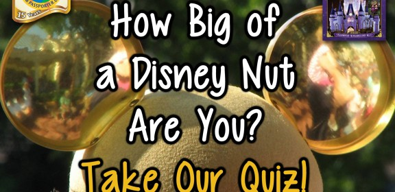 disney-nut